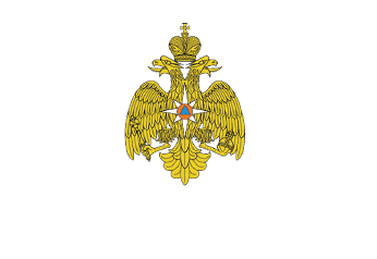logo_MCHS